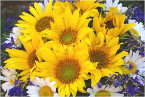 Buchet cu floarea soarelui si margarete
