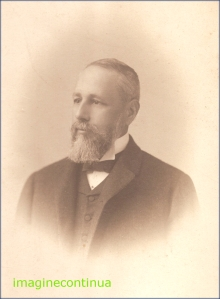Portret de barbat cu barba, circa 1885