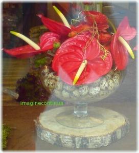 Aranjament cu flori de Anthurium