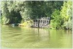 Peisaj din delta Dunarii pe canalul 36